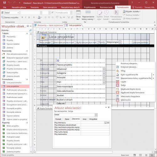 Konsultacje Microsoft Access