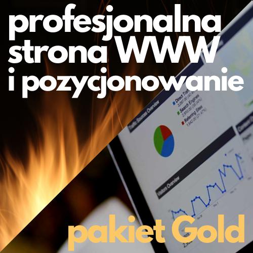 Profesjonalna strona WWW ipozycjonowanie - pakiet Gold