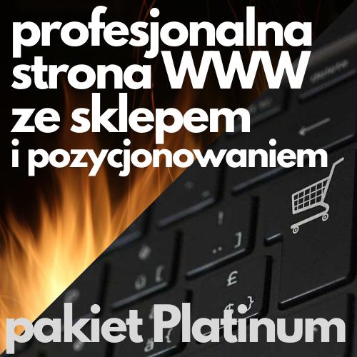Profesjonalna strona WWW zesklepem ipozycjonowaniem - pakiet Platinum