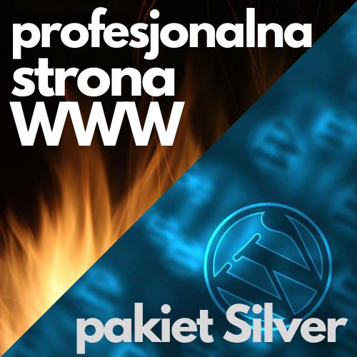 Profesjonalna strona WWW - pakiet Silver