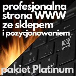 Profesjonalna strona WWW ze sklepem i pozycjonowaniem - pakiet Platinum