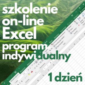Szkolenie online Microsoft Excel program indywidualny (1 dzień)