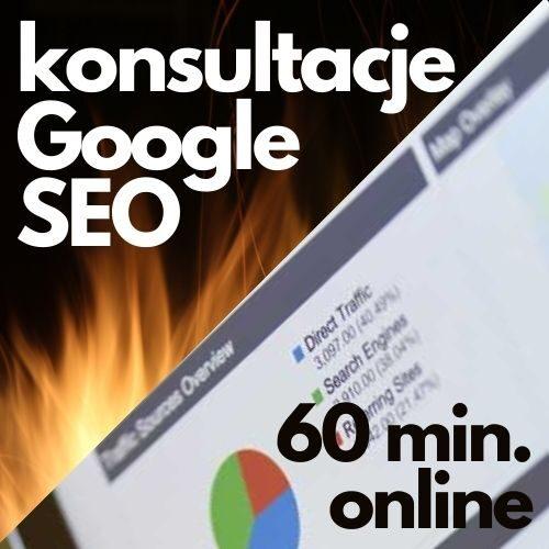 Konsultacje pozycjonowanie Google SEO (60 min. online)