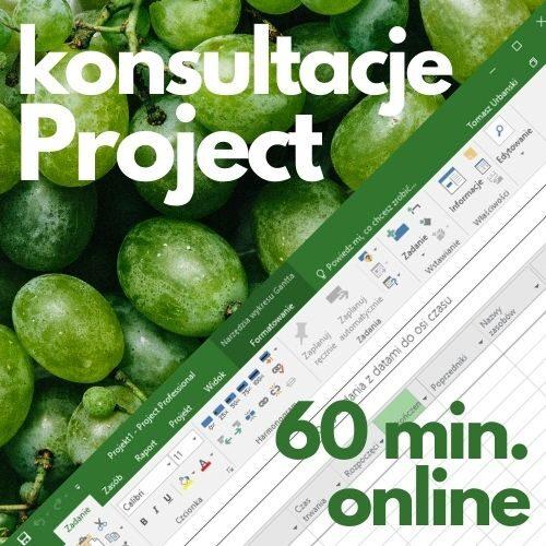 Konsultacje Microsoft Project (60 min. online)